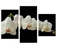 """Стильная картина из 3-х модулей """"Орхидея"""""""
