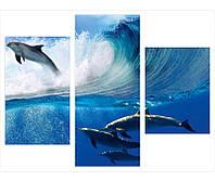 """Фотокартины """"Дельфины над волной"""""""