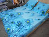 Постельное белье поплин дизайн Перо жарптицы голубой