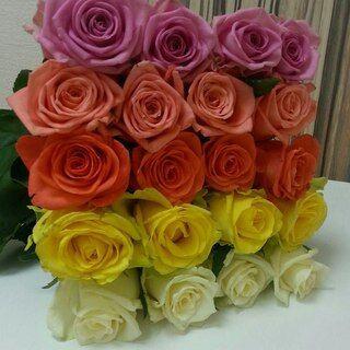 Різнокольорові троянди в подарунковій коробці