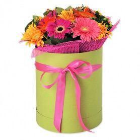 Квіти в капелюшної коробки
