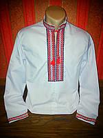 Вышиванка мужская РУЧНАЯ вышивка (р.50), фото 1