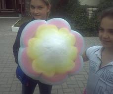 Аппарат фигурной сладкой ваты, фото 3