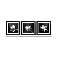 Модульная картина: Цветы (ч/б) (75х22 см)