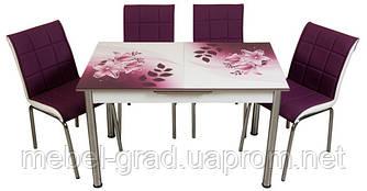 Обеденный набор с раскладным столом Лилия Лотос-М