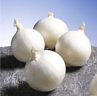 ГЛЕДСТОУН - семена лука репчатого белого, 250 000 семян, Bejo Zaden, фото 1
