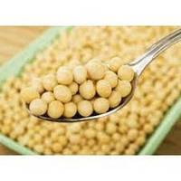 Протеин сои от Natura-Tec, 25 гр / 100 гр