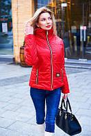 Элегантная женская весенняя куртка на замочке под горло. На утеплителе. Разные цвета