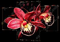 Модульная картина с часами 80 орхидея