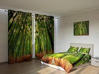 Фотокомплект  бамбук роща