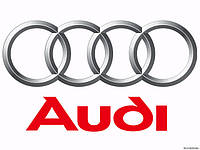 Пороги Audi