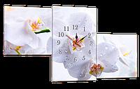 Модульная картина с часами 182 орхидея