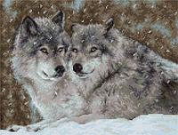 Luca-S Набор для вышивки крестом Два волка (пара волков) В2291