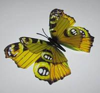Бабочка 3 D 12/9,5 см желтая