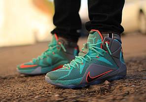 7165eb16073a Баскетбольные кроссовки Nike LeBron 12 Miami Dolphins купить в ...