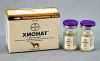 Хіонат лікує дисплазію тазостагнового суглобу собак. Досвід застосування препарату.
