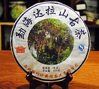 Чай Шен Пуэр Хай Дала Шань Гушу 2010 Год,  От 10 Грамм, фото 1