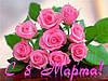 Поздравляем дорогих ЖЕНЩИН с Международным Женским Днем 8 МАРТА !!!!