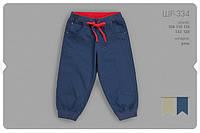 Летние шорты для мальчика ШР334