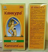 Чай КАНКУРА - очищение организма и стройность фигуры, в пачке 20 пакетов!