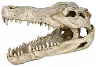 Trixie Череп крокодила