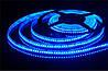 Светодиодная лента 3528-120 led (blue) , фото 2