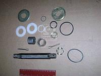 Ремкомплект рычага маятникового (левый) 2217 (ГАЗ). 2217-3414103