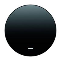 Клавиша 1-я с линзой, чёрная, Berker R.1/R.3