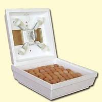 Инкубатор Квочка на 70 яиц  ручной переворот (30-1-С)