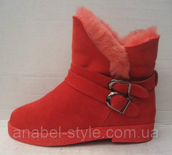 Полусапожки женские натуральные замшевые красные Код 117 м