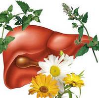 Программа очистки и лечения печени и желчного пузыря натуральными препаратами от Грин-визы