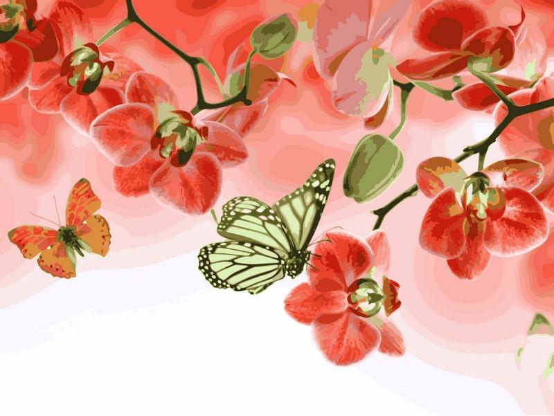 Раскраски для взрослых 30×40 см. Бабочки и красные орхидеи