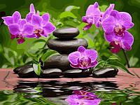 Раскраски для взрослых 30×40 см. Лиловые орхидеи