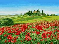 Картины по номерам 30×40 см. Маковое поле