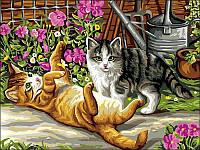 Картины по номерам 30×40 см. Котята в саду