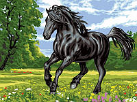 Набор для рисования 30×40 см. Черный конь