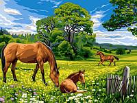 Картини по номерах 30×40 см. Солнечный луг