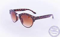 Солнцезащитные очки в ретро стиле - Коричневые - 2015-227, фото 1