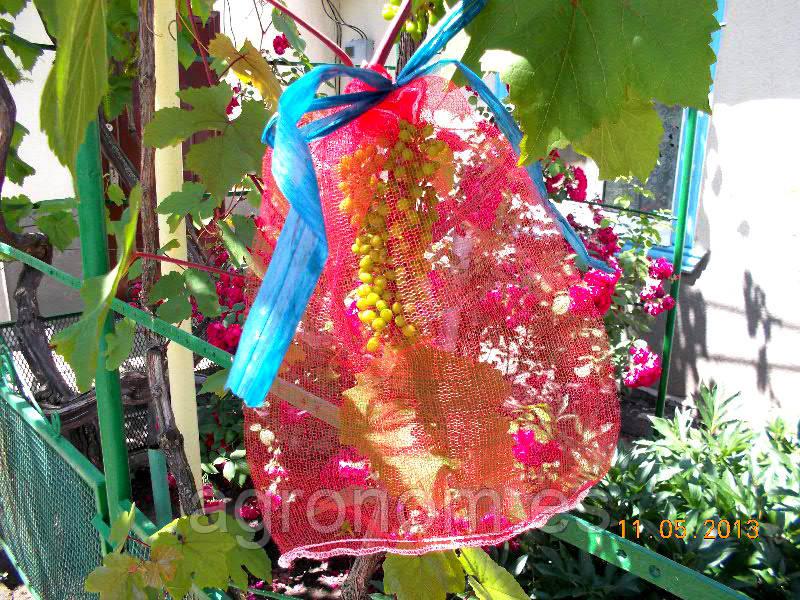 Виноградная сетка 2кг(20х35см) 50шт