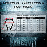 Шорты Peresvit Legend Fightshorts Metallic, фото 6