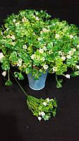 Травка ирландская, в-23 см (10/8) (цена за 1 шт. + 2 гр.)