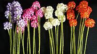 Лук цветной, 5 соцветий, в-40 см (35/30) (цена за 1 шт. + 5 гр.)