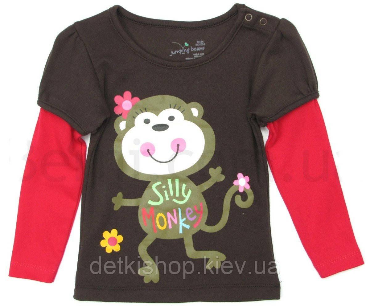 Реглан на девочку «Silly Monkey»