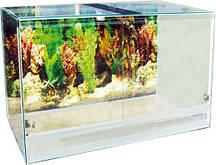 Террариум стеклянный – Природа (большой)
