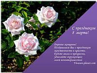 C праздником весны, 8 марта!