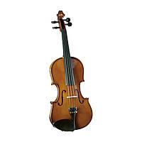 Скрипка Cremona SV-100 4/4 (комплект)