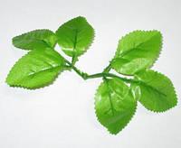 Листья розы 6-ка светло-зеленые