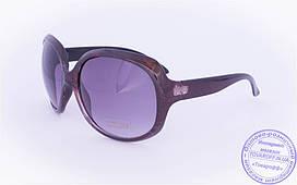 Оптом женские солнцезащитные очки - Бордовые - 8860