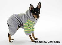 """Велюровый костюм """"Новый лидер""""  для собак, размер М"""