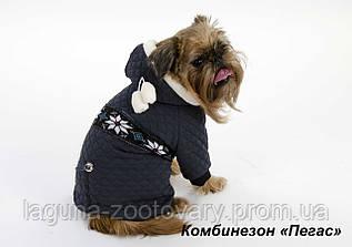 """Утепленный комбинезон """"Пегас"""" для собак, размер XXS"""
